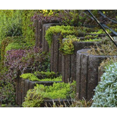Viastein Lunetto növénykosár / növénytámfal barna